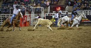rodeo.team.roping