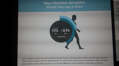 Ancestors.Neanderthal